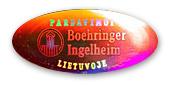 Boringer2